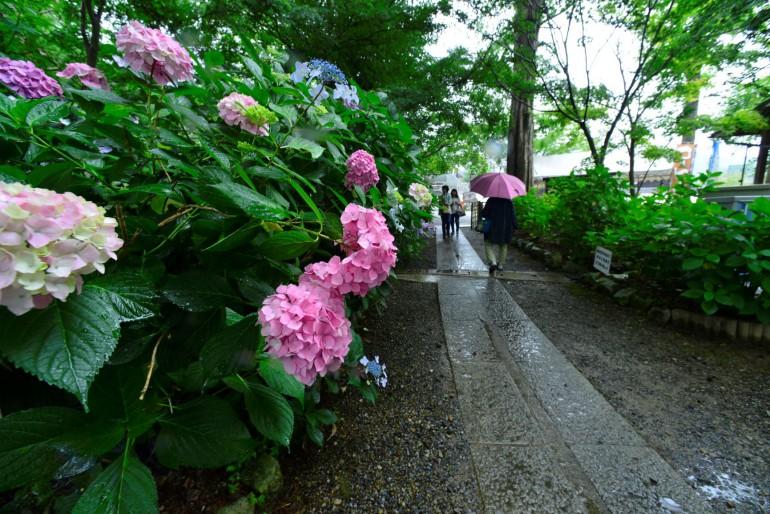 優秀賞 西脇市 高岡峯子 楽しい雨